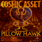 Cosmic Asset Pillow hawk
