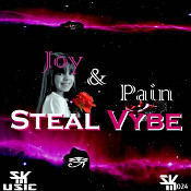 Steal Vybe featuring Stephanie Renee - Joy and pain