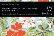 Illvibe Collective featuring Lady Alma - What they say