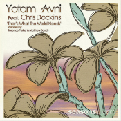 Yotam Avni featuring Chris Dockins - That's what the world needs