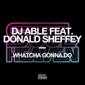 DJ Able featuring Donald Sheffey - Watcha gonna do