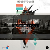 House to Jazz Experience Vol. 2