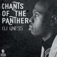 DJ Qness - Chants of the panther