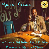 DJ Pope & Marc Evans - You'll never find another love like mine