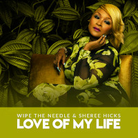 Wipe The Needle & Sheree Hicks - Love of my life