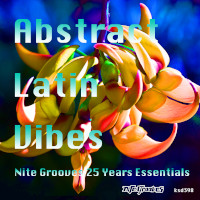 Abstract Latin Vibes (Nite Grooves 25 Years Essentials)